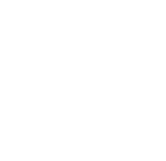 New Zealand Council for Intercultural Education